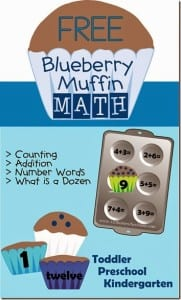 Blueberry Muffin Math