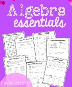 Algebra Essentials Resource Bundle