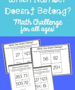 Which Number Doesn't Belong? Math Challenge