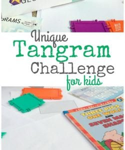 Want a Unique Tangram Game to Challenge Your Kids?